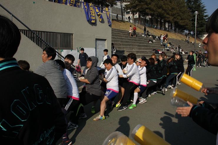 2017-사범대체육대회1일18.jpg
