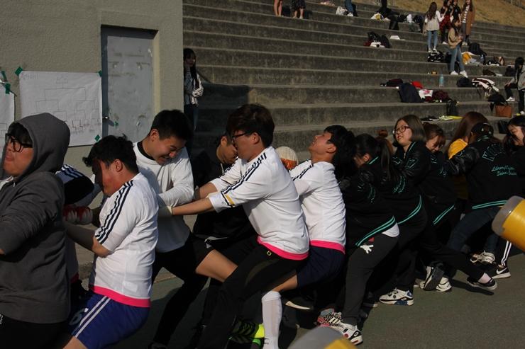 2017-사범대체육대회1일19.jpg